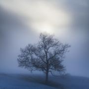 Premiers rayons à travers la brume
