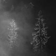 réserve hauts-plateaux automne 2