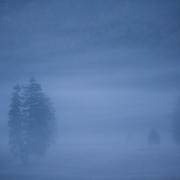 Matin bleu sur Herbouilly