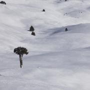 plaine de Queyrie enneigée 2