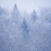 songe d'hiver