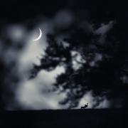 Si la lune...