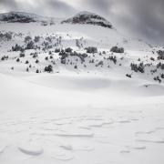 Clapotis de neige au pied de la Montagnette, Vercors