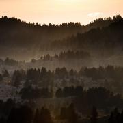 réserve des Hauts-Plateaux, brumes 5