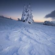 plateau des Ramées hiver 2