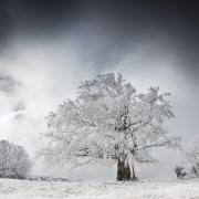 font d'urle hiver 5