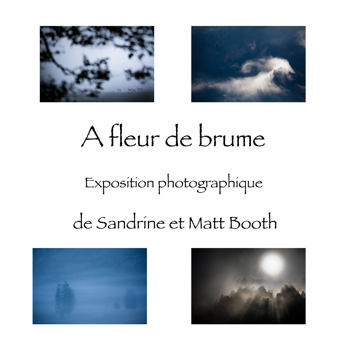 affiche_expo_a_fleur_de_brume