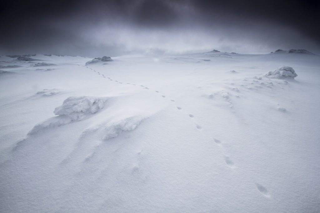 photo vercors hiver