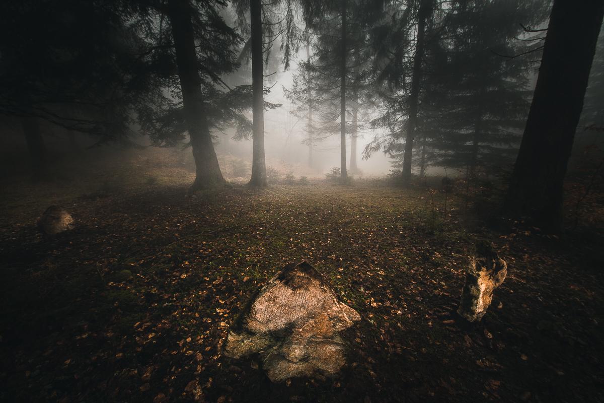 Le Nemeton rayonne son mystère et sa magie dans la forêt